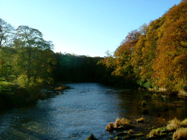 Autumnal_Splendor_in_County_Durham.JPG
